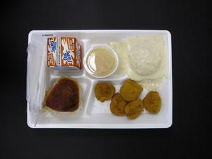 Primary view of object titled 'Student Lunch Tray: 01_20110217_01B6049'.