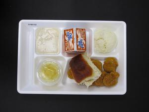 Primary view of object titled 'Student Lunch Tray: 01_20110217_01B6102'.