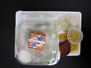 Primary view of object titled 'Student Lunch Tray: 01_20110217_01B6116'.