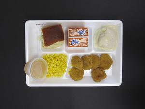 Primary view of object titled 'Student Lunch Tray: 01_20110217_01B6121'.