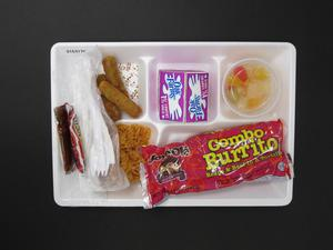 Primary view of object titled 'Student Lunch Tray: 01_20110217_01C4170'.