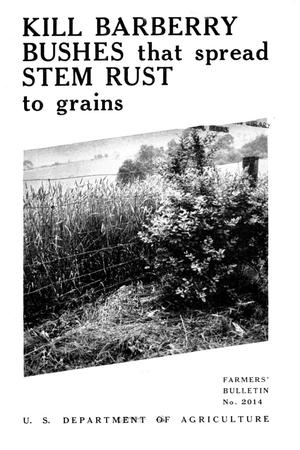 Primary view of object titled 'Kill barberry bushes that spread stem rust to grains.'.