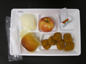 Primary view of object titled 'Student Lunch Tray: 02_20110328_02B6088'.