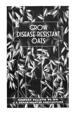 Primary view of object titled 'Grow disease-resistant oats.'.