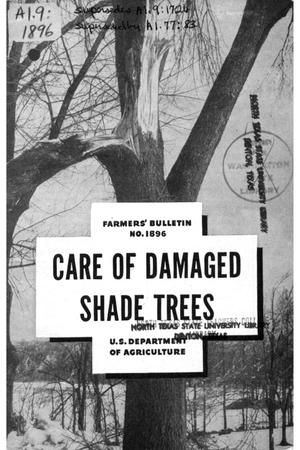 Primary view of object titled 'Care of damaged shade trees.'.