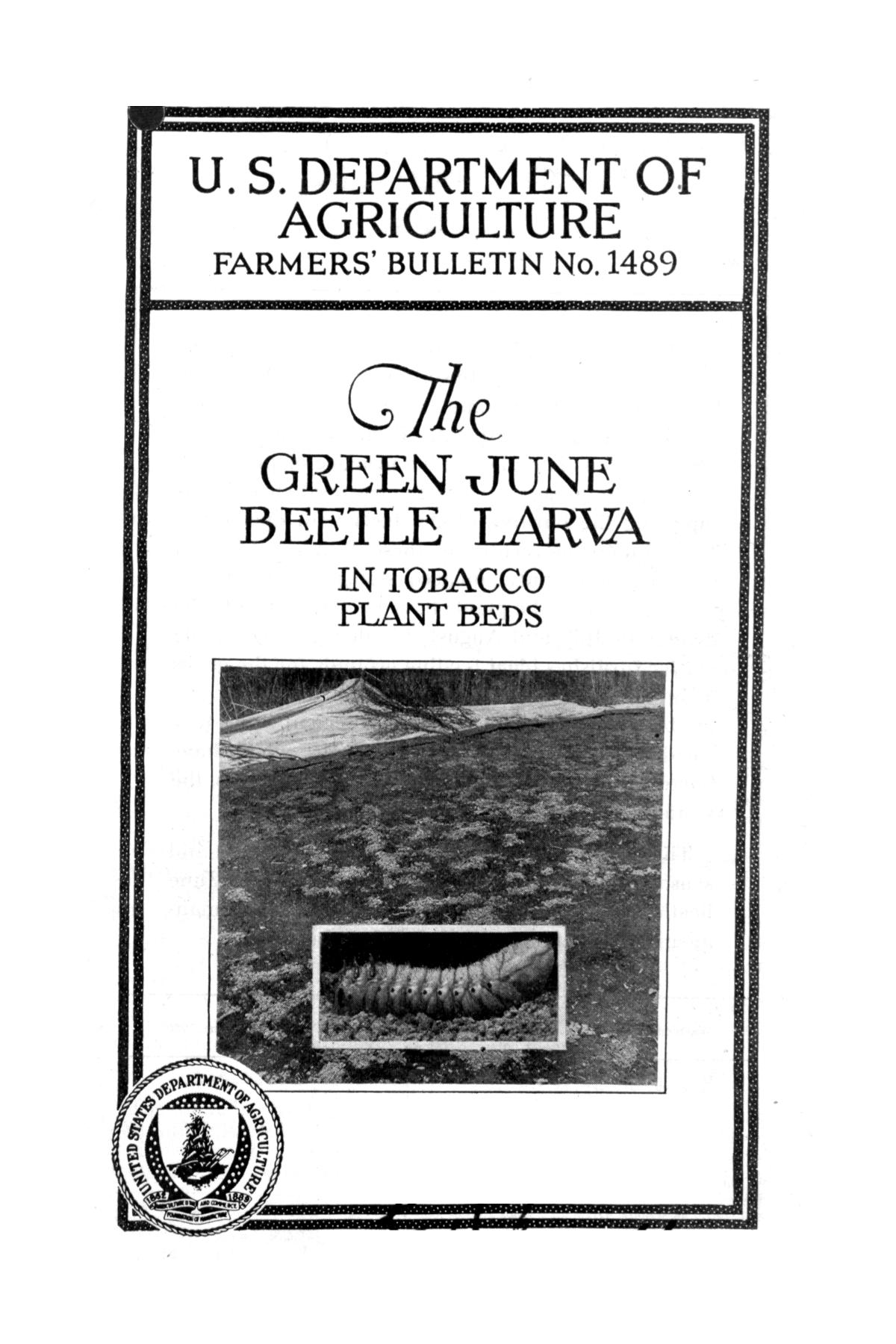 The green June beetle larva in tobacco plant beds.                                                                                                      Front Cover