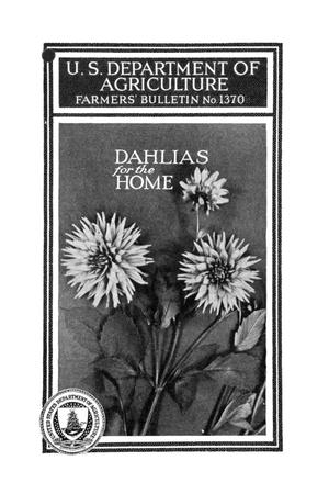 Primary view of object titled 'Dahlias for the Home.'.