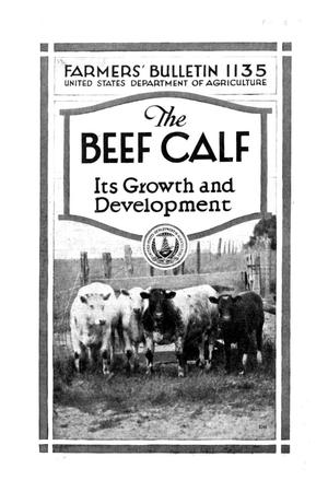 Primary view of object titled 'The beef calf : its growth and development.'.