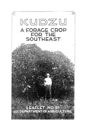 Kudzu : a forage crop for the Southeast.