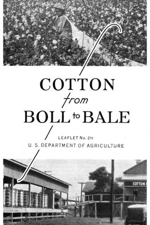 Primary view of object titled 'Cotton from boll to bale.'.