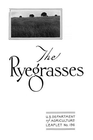 Primary view of object titled 'The Ryegrasses.'.