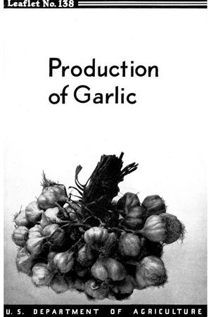 Primary view of object titled 'Production of Garlic.'.