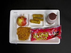 Primary view of object titled 'Student Lunch Tray: 02_20110329_02C4316'.