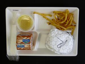 Primary view of object titled 'Student Lunch Tray: 01_20110330_01A5867'.