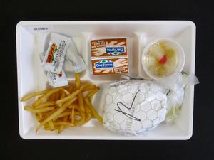 Primary view of object titled 'Student Lunch Tray: 01_20110330_01A5876'.
