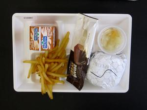 Primary view of object titled 'Student Lunch Tray: 01_20110330_01A5881'.