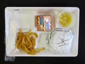 Primary view of object titled 'Student Lunch Tray: 01_20110330_01A5894'.