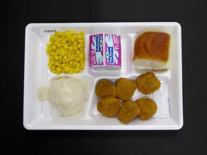 Primary view of object titled 'Student Lunch Tray: 01_20110330_01B5879'.