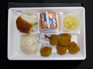 Primary view of object titled 'Student Lunch Tray: 01_20110330_01B5881'.