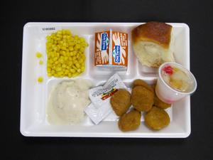 Primary view of object titled 'Student Lunch Tray: 01_20110330_01B5882'.