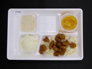 Primary view of object titled 'Student Lunch Tray: 01_20110330_01B5884'.