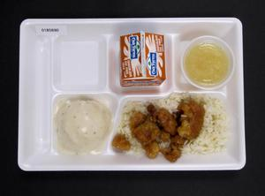 Primary view of object titled 'Student Lunch Tray: 01_20110330_01B5890'.