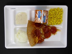 Primary view of object titled 'Student Lunch Tray: 01_20110330_01B5895'.