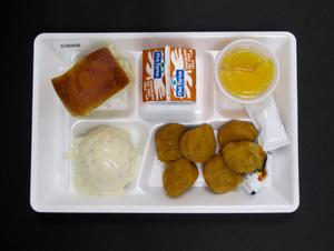 Primary view of object titled 'Student Lunch Tray: 01_20110330_01B5896'.