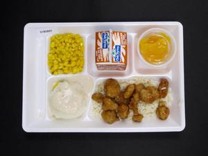 Primary view of object titled 'Student Lunch Tray: 01_20110330_01B5897'.