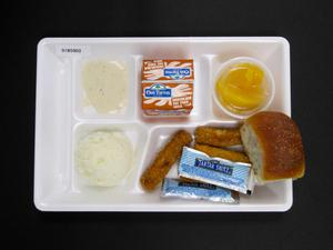 Primary view of object titled 'Student Lunch Tray: 01_20110330_01B5902'.