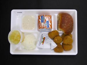 Primary view of object titled 'Student Lunch Tray: 01_20110330_01B5906'.