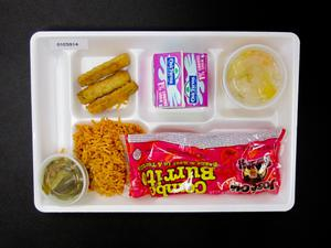 Primary view of object titled 'Student Lunch Tray: 01_20110330_01C5914'.