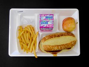 Primary view of object titled 'Student Lunch Tray: 01_20110401_01A5808'.