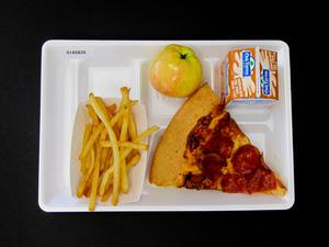 Primary view of object titled 'Student Lunch Tray: 01_20110401_01A5826'.