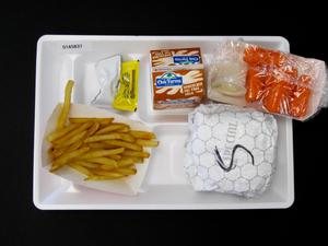 Primary view of object titled 'Student Lunch Tray: 01_20110401_01A5837'.
