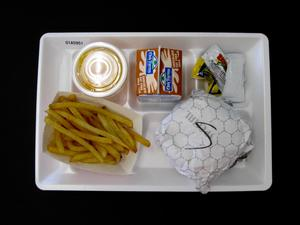 Primary view of object titled 'Student Lunch Tray: 01_20110401_01A5951'.