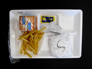Primary view of object titled 'Student Lunch Tray: 01_20110401_01A5952'.