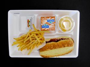 Primary view of object titled 'Student Lunch Tray: 01_20110401_01A5958'.