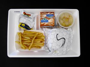 Primary view of object titled 'Student Lunch Tray: 01_20110401_01A5959'.