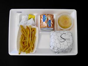 Primary view of object titled 'Student Lunch Tray: 01_20110401_01A5983'.