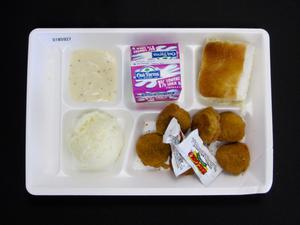 Primary view of object titled 'Student Lunch Tray: 01_20110401_01B5927'.
