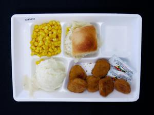 Primary view of object titled 'Student Lunch Tray: 01_20110401_01B5933'.