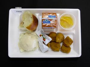 Primary view of object titled 'Student Lunch Tray: 01_20110401_01B5936'.