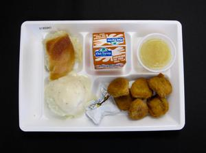 Primary view of object titled 'Student Lunch Tray: 01_20110401_01B5941'.