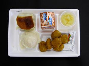 Primary view of object titled 'Student Lunch Tray: 01_20110401_01B5955'.