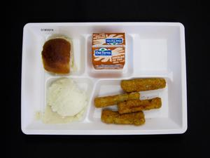 Primary view of object titled 'Student Lunch Tray: 01_20110401_01B5974'.