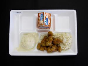 Primary view of object titled 'Student Lunch Tray: 01_20110401_01B5977'.