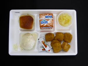 Primary view of object titled 'Student Lunch Tray: 01_20110401_01B5981'.