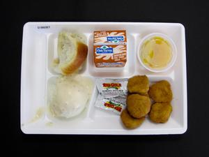 Primary view of object titled 'Student Lunch Tray: 01_20110401_01B6067'.
