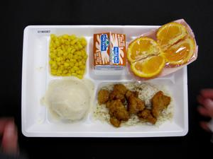 Primary view of object titled 'Student Lunch Tray: 01_20110401_01B6087'.